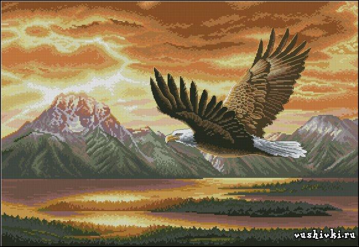 Полет орла. Схема вышивки
