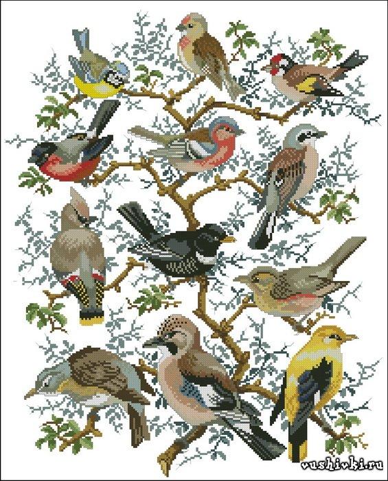Дерево птиц. Схема вышивки