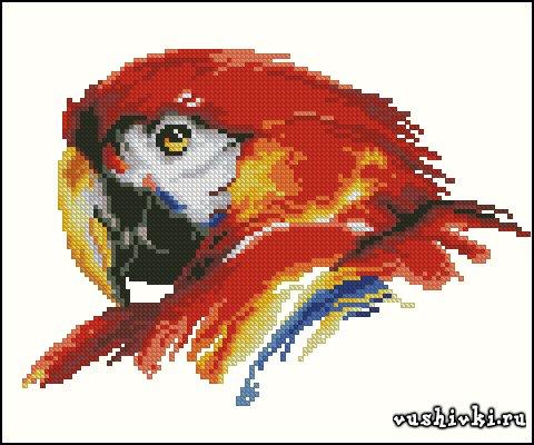 Профиль попугая. Схема вышивки