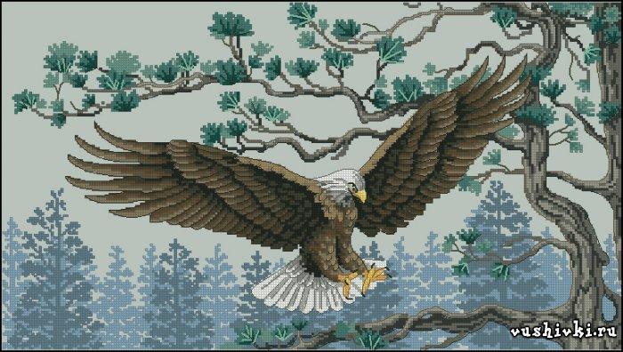 Вышивка орла в полете