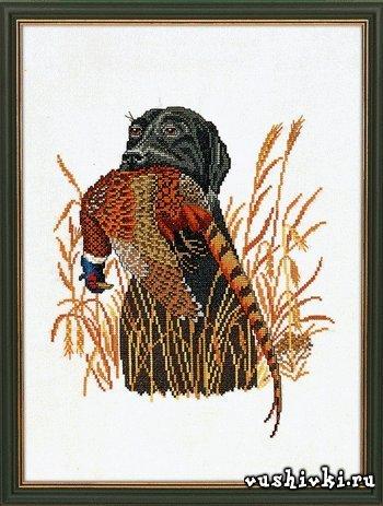 Охотник и фазан