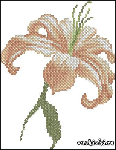 Лилия. Схема вышивки