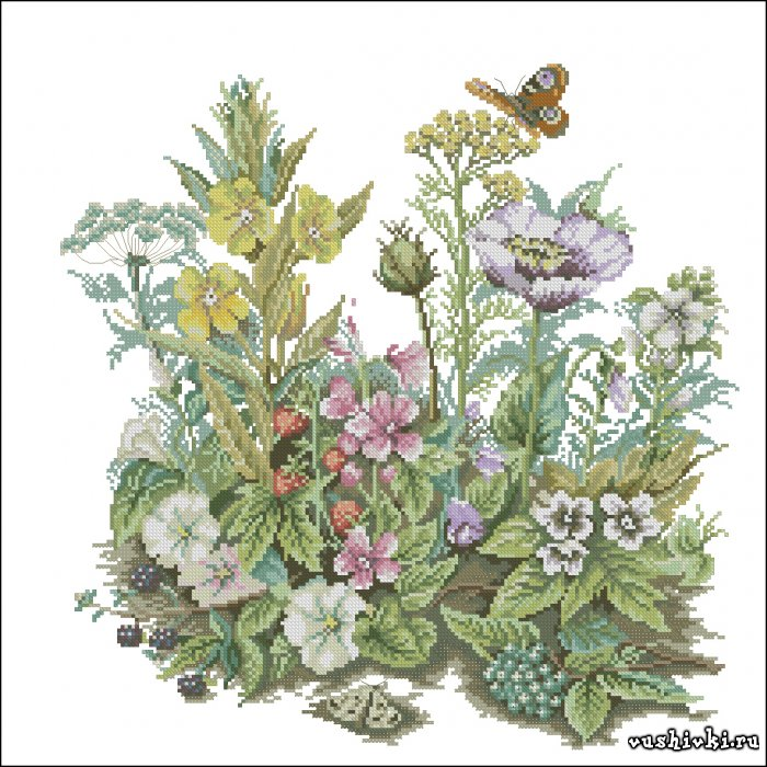 Полевые цветы. Схема вышивки