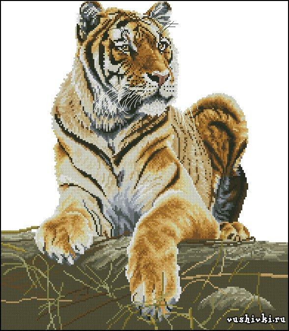 Гордый тигр. Схема вышивки