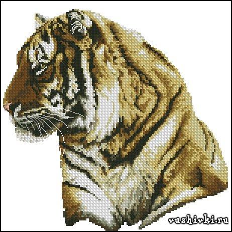 Тигр. Схема вышивки