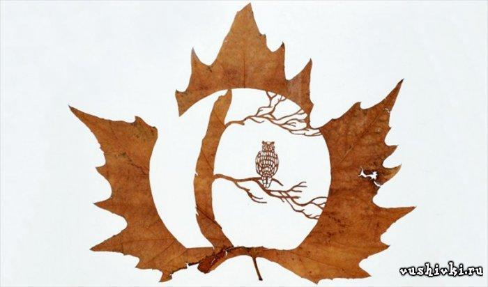 Вырезанные картинки из листьев
