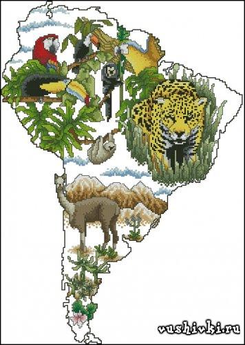 Континент - Южная Америка