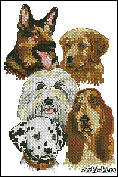 Породы собак. Схема вышивки