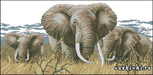 Слоны. Схема вышивки