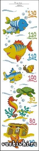 Ростомер - рыбки